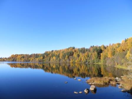 Beautiful autumn in Sweden, October 2013