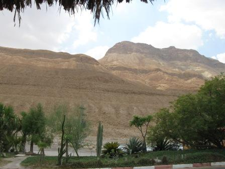 Desert surrounding the Dead Sea